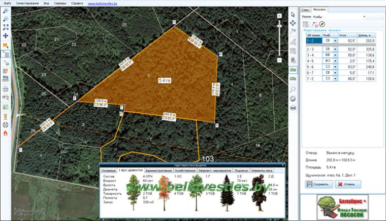 Картинка окно модуль Отвода лесосек и печати абриса (чертежа) лесосеки